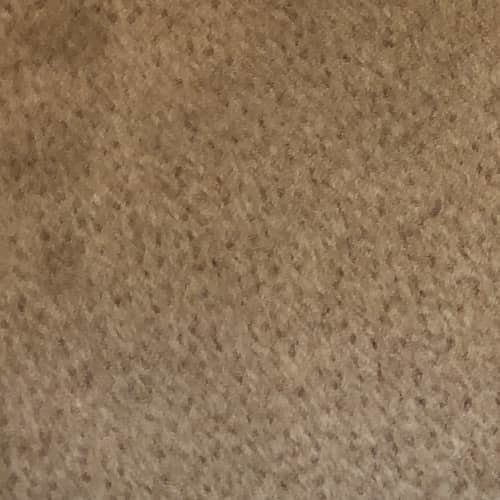 house carpet after cleaning