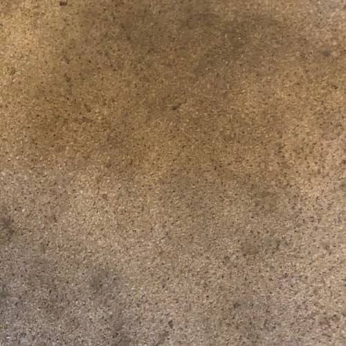 house carpet before cleaning